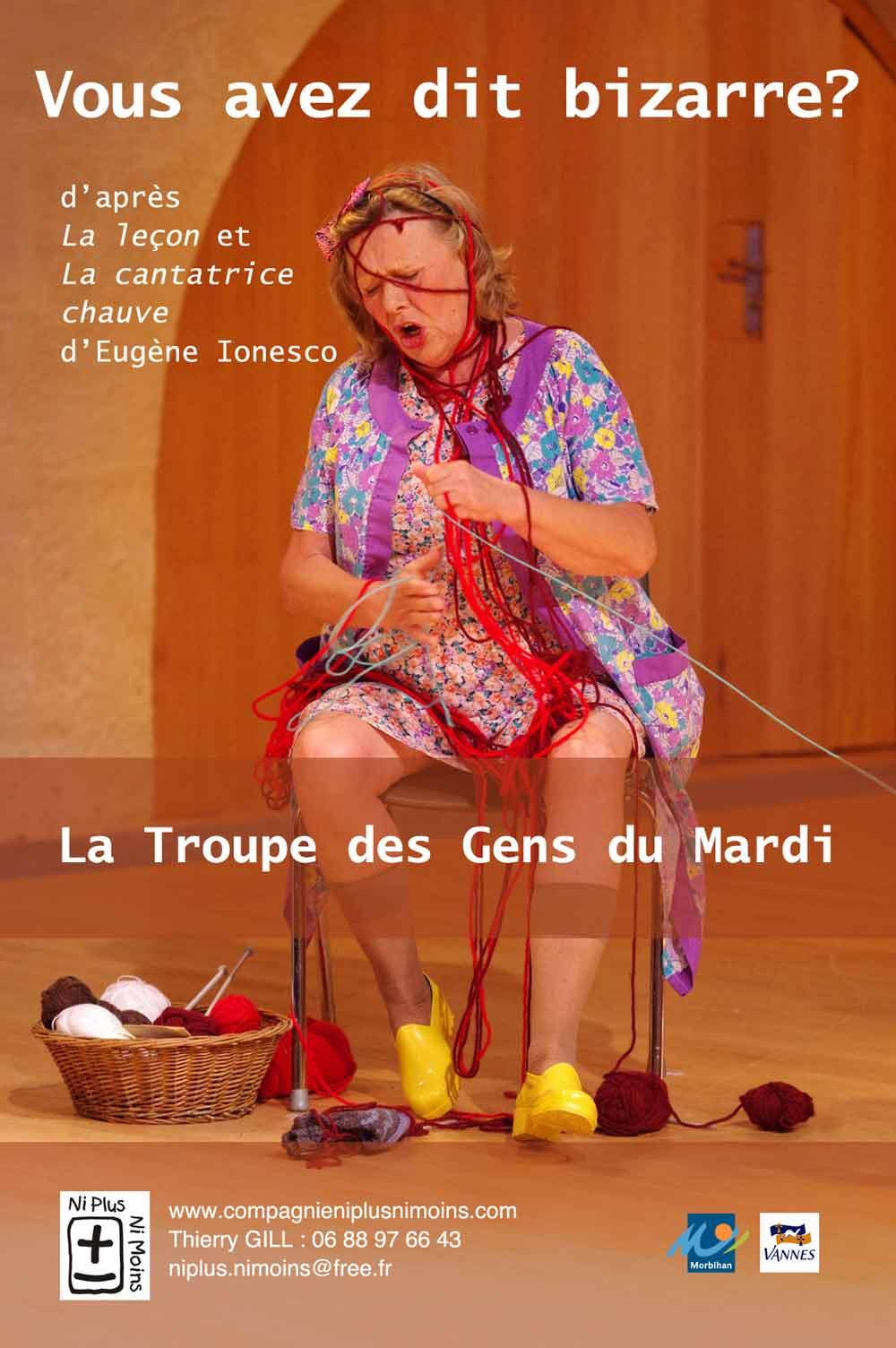 Vous avez dit bizarre, pièce de théâtre de la Compagnie Ni Plus Ni Moins, ateliers théâtre pour tous (petits, enfants, ados, adultes) à Vannes dans le Morbihan